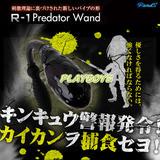 日本進口R1專用多功能震動棒(前後兩用)-不含控制器